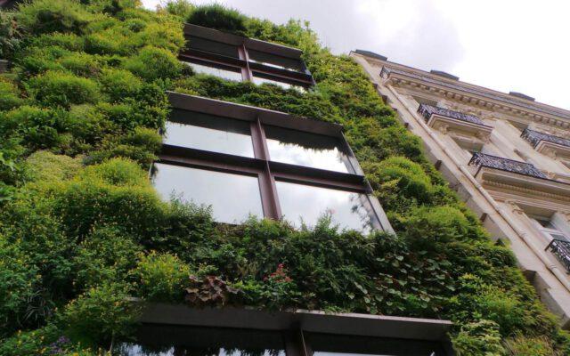 klimaatbestendige stad